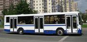 Городские автобусы 116 мест ОЧЕНЬ НЕДОРОГО