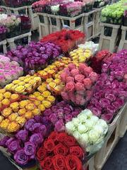 Доставка цветов Актобе ROMANTIC